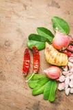 Beiträge zu thailändischem würzigem Lebensmittel, Tom yum Lizenzfreie Stockfotografie