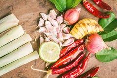 Beiträge zu thailändischem würzigem Lebensmittel, Tom yum Stockfotografie