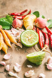 Beiträge zu thailändischem würzigem Lebensmittel, Tom yum Stockfoto