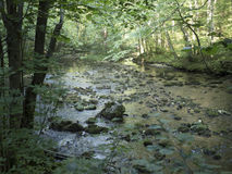 Beiu rzeka przy Cheile Nerei parkiem narodowym, Rumunia zdjęcia royalty free