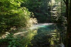 Beiului's-Augensee, Rumänien Lizenzfreie Stockbilder