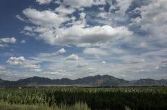 Beiyue Hengshan landscape Stock Images