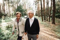Bejaard houdend van paar royalty-vrije stock afbeelding