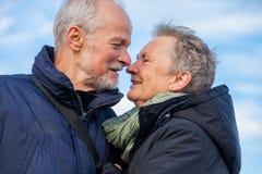 Bejaard paar die en de zon omhelzen vieren Royalty-vrije Stock Foto
