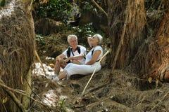 Bejaard paar die in het bos lopen Royalty-vrije Stock Foto's