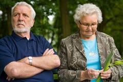 Bejaard paar die van aard genieten stock fotografie