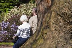 Bejaard paar in het park Royalty-vrije Stock Afbeeldingen