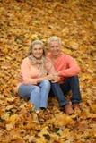 Bejaard paar in het park Stock Foto's