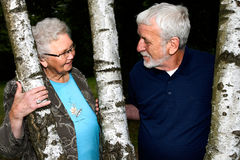 Bejaard paar tussen twee bomen stock foto