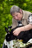 Bejaarde in een rolstoel met een konijn Stock Foto