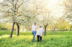 Bejaarde grootmoeder met steunpilaar en kleindochter in de lenteaard stock foto