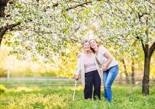 Bejaarde grootmoeder met steunpilaar en kleindochter in de lenteaard stock foto's