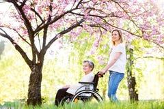 Bejaarde grootmoeder in rolstoel met kleindochter in de lenteaard stock foto's