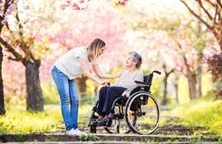 Bejaarde grootmoeder in rolstoel met kleindochter in de lenteaard stock afbeelding