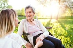 Bejaarde grootmoeder in rolstoel met kleindochter in de lenteaard royalty-vrije stock afbeeldingen