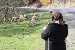 Bejaarde herdervrouw naast de landelijke Provincie van weggilan royalty-vrije stock foto's