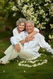 Bejaarde paarzitting Stock Fotografie