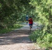 Bejaarde twee die in een bos lopen stock afbeeldingen