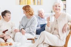 Bejaarde vrienden die middag samen doorbrengen Stock Fotografie