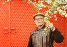 Bejaarde in zijn tuin Royalty-vrije Stock Afbeeldingen
