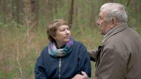 Bejaarden, mooie paarzitting in een hout, op een gezaagd hout Zij spreken teder, koesteren, in liefde bekijk elkaar stock footage