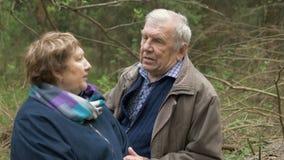 Bejaarden, mooie paarzitting in een hout, op een gezaagd hout Zij spreken teder, koesteren, in liefde bekijk elkaar stock videobeelden