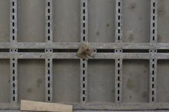 Bekistingselementen in gebruik met de Nieuwe brug van de schroefverbinding constr stock fotografie