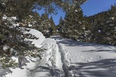 Beklim aan het toevluchtsoord van 'komt DE Rubià ³ 'in de winter stock fotografie