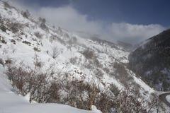 Beklim aan het toevluchtsoord van 'komt DE Rubià ³ 'in de winter stock foto