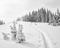 Beklim in verse sneeuw stock fotografie