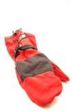 Beklimmend apparatuur - Handschoen met wind stoper en polair royalty-vrije stock foto