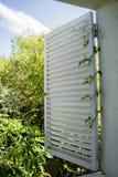 Beklimmend Jasmijninstallatie krul een open venster wit blind royalty-vrije stock foto