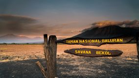 Bekol-Savanne an Nationalpark Baluran lizenzfreie stockfotos
