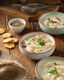 Bekonowa milczek gęsta zupa rybna Zdjęcia Royalty Free