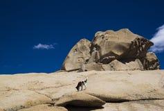Bektau ata, uitgestorven vulkaan in Kazachstan Royalty-vrije Stock Afbeeldingen