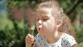 Bekymmersl?st ultrarapidn?rbildskott av den gulliga lilla flickan bl?sa en maskros utomhus p? en solnedg?ng Begrepp av lyckligt lager videofilmer