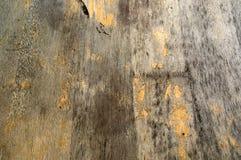 Bekymrad Wood bakgrund Royaltyfria Bilder