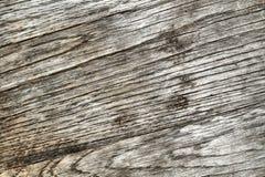 bekymrat trä fotografering för bildbyråer