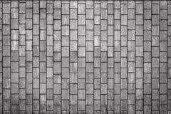 Belägen mitt emot grå färgtegelplattor som en tappningbakgrund Arkivbilder