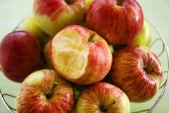Belägga med metall bunken med gräsplan, gula och röda äpplen och en biten äpplecloseup royaltyfria foton