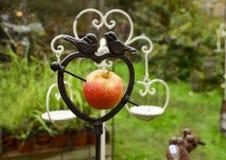Belägga med metall fågelförlagemataren med äpplet i formen av hjärta Royaltyfria Foton