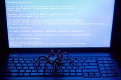 Belägga med metall spindeln på datortangentbordet, viruset, den blåa skärmen, tema av informationssäkerhet arkivfoton