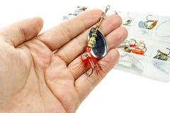 Belägga med metall spinnaren för att fånga den rov- fisken i gömma i handflatan av fiskaren Arkivfoton