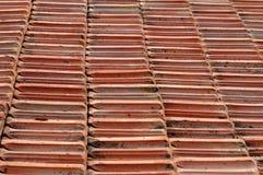 belägga med tegel för terrakotta Royaltyfri Foto