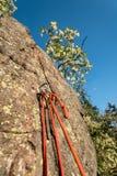 Belägga stationsankaret som förbereds för abseiling av klättraväggen royaltyfri bild
