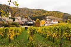 Bel élevage de vin en automne autour de ville de Durnstein, Autriche Photos stock
