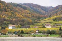 Bel élevage de vin en automne autour de ville de Durnstein, Autriche Photos libres de droits