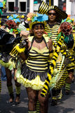 Bel été de fille carnaval Photos stock