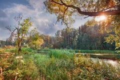 bel été de fleuve de nature d'image Photo libre de droits