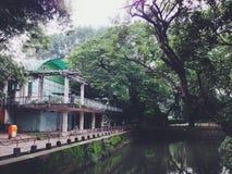Bel étang avec des arbres dans le zoo de Saigon au Vietnam du Sud Images stock